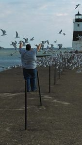 Stacy and a Flock of Seagulls