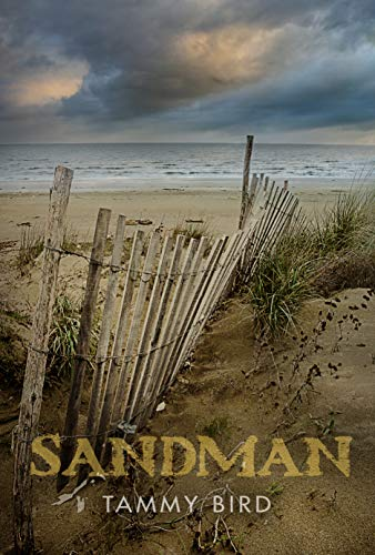 Sandman by Tammy Bird