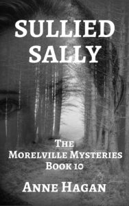 Sullied Sally Book Cover